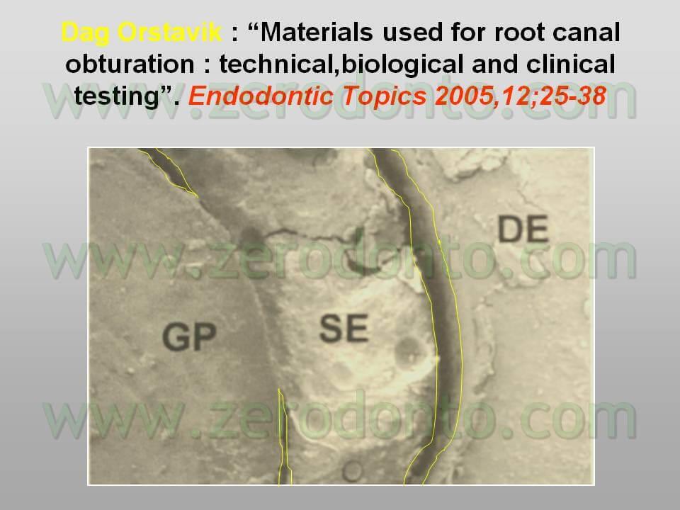 endodontics microscope