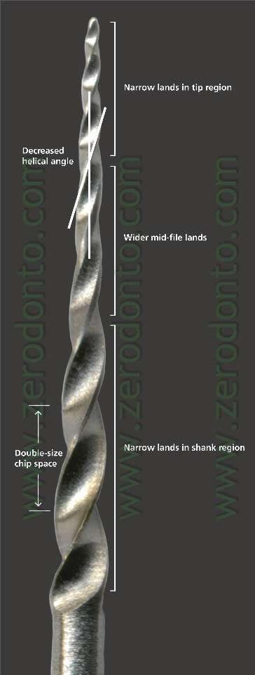 endodonzia gtx